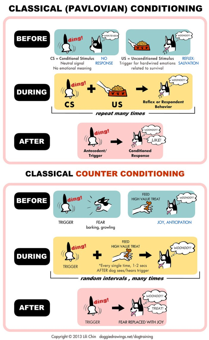 Classical Conditioning And Operant Conditioning Explained