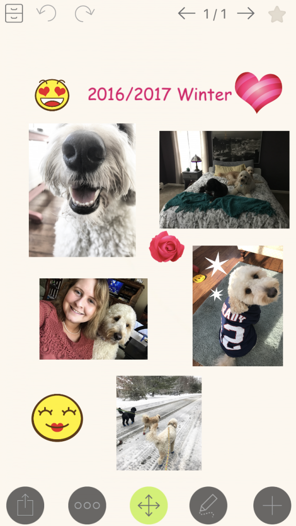 A pet journal made with NoteLedge