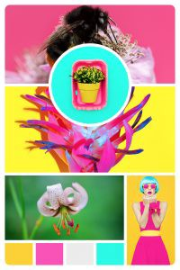 Mood Board Monday: Bright | www.girlvscity.com