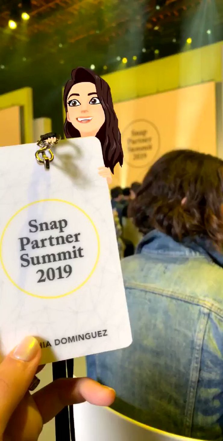 Snap summit picture