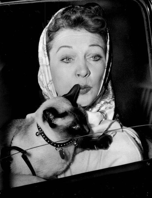 Vivien Leigh and her Siamese cat, Armando