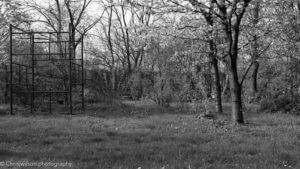 Back Garden with Black and white and red filter
