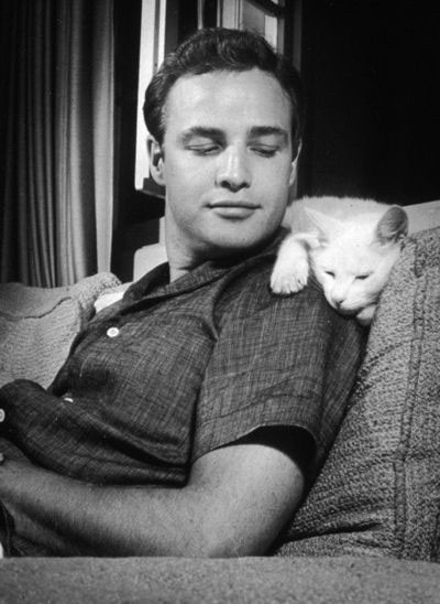 Marlon Brando with His Cat on the couch