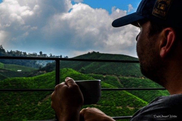 Tea with a sweet view at the Boh Plantation in the Cameron Highlands, Malaysia