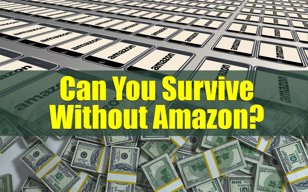 Can You Survive Without Amazon?