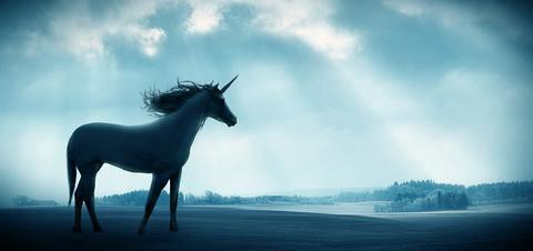 Are Unicorns Real What Vision Has To Do With Reality