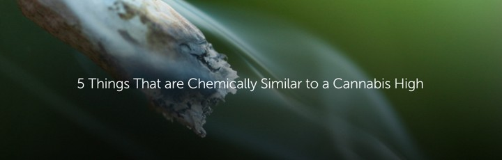 things that are chemically similar to cannabis