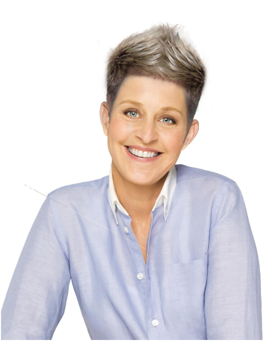 Amazing Makeover Starring Ellen Degeneres Rene Fris Medium