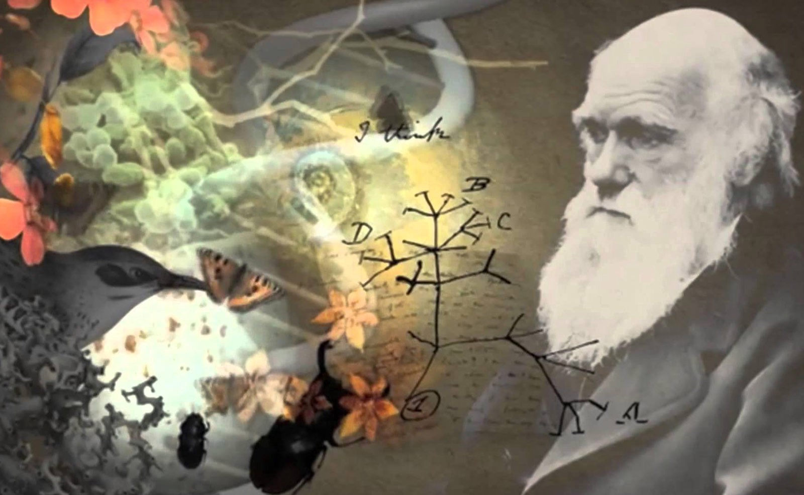 Science Rediscovers and, At Last, Explains The Soul