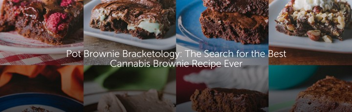 Pot Brownie Bracketology: The Search for the Best Cannabis Brownie Recipe Ever