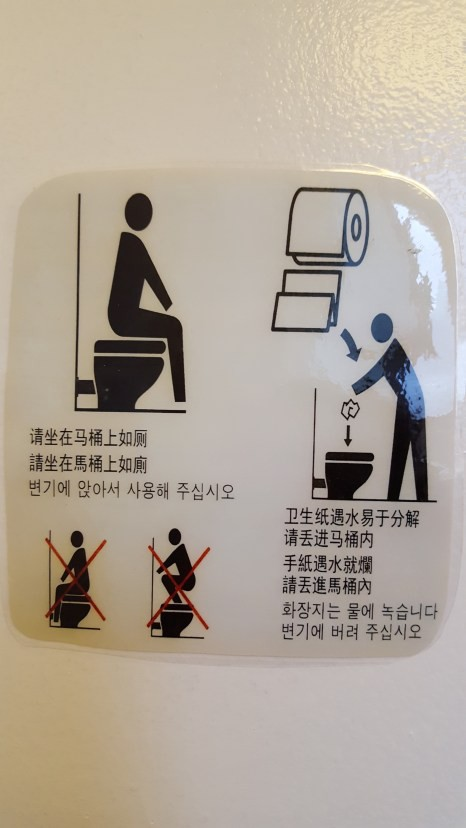 Instruction Manual on how to use a toilet IN CASE YOU GET CONFUSED