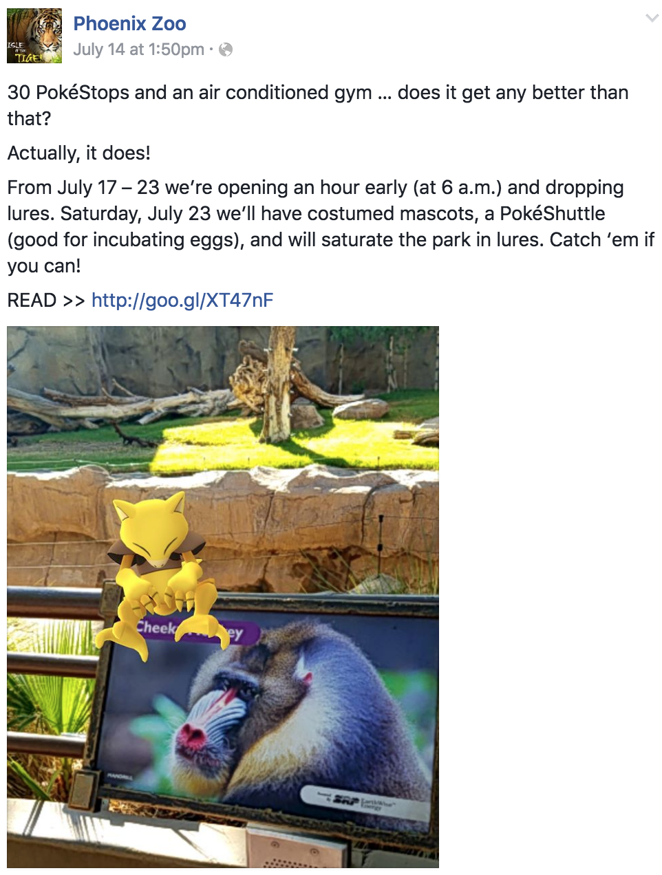 Pokemon GO at the Phoenix Zoo