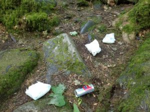 THREE disposable diapers abandoned in beautiful green forest. THREE.