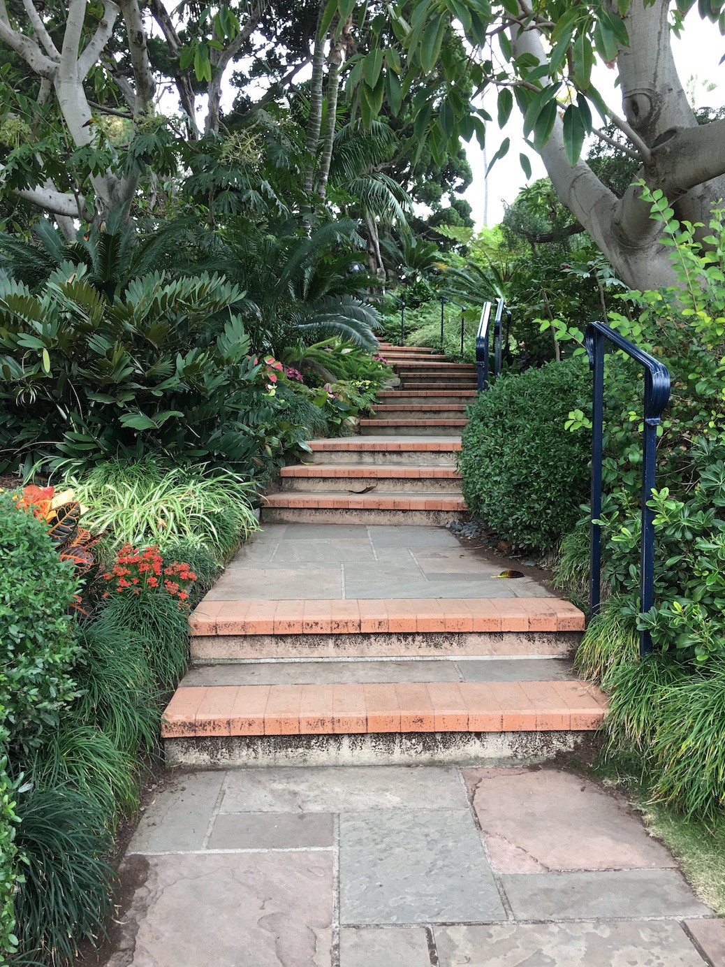 Steps to Yogananda's Hermitage in Encinitas, California, where he wrote Autobiography of a Yogi