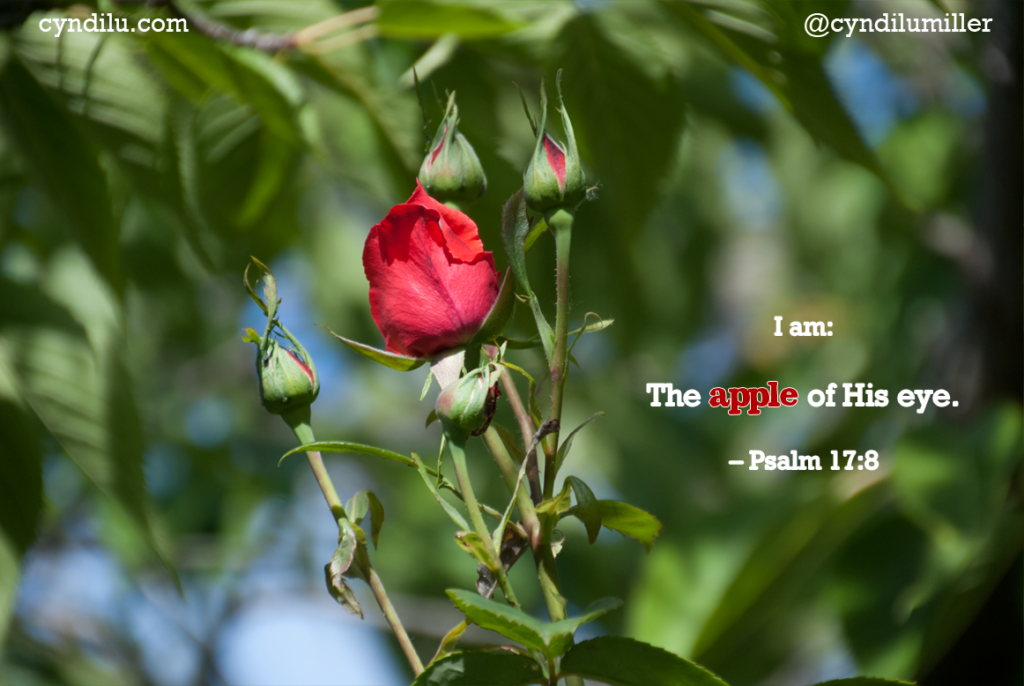 I am the apple of God's eye so it says in Psalm 17