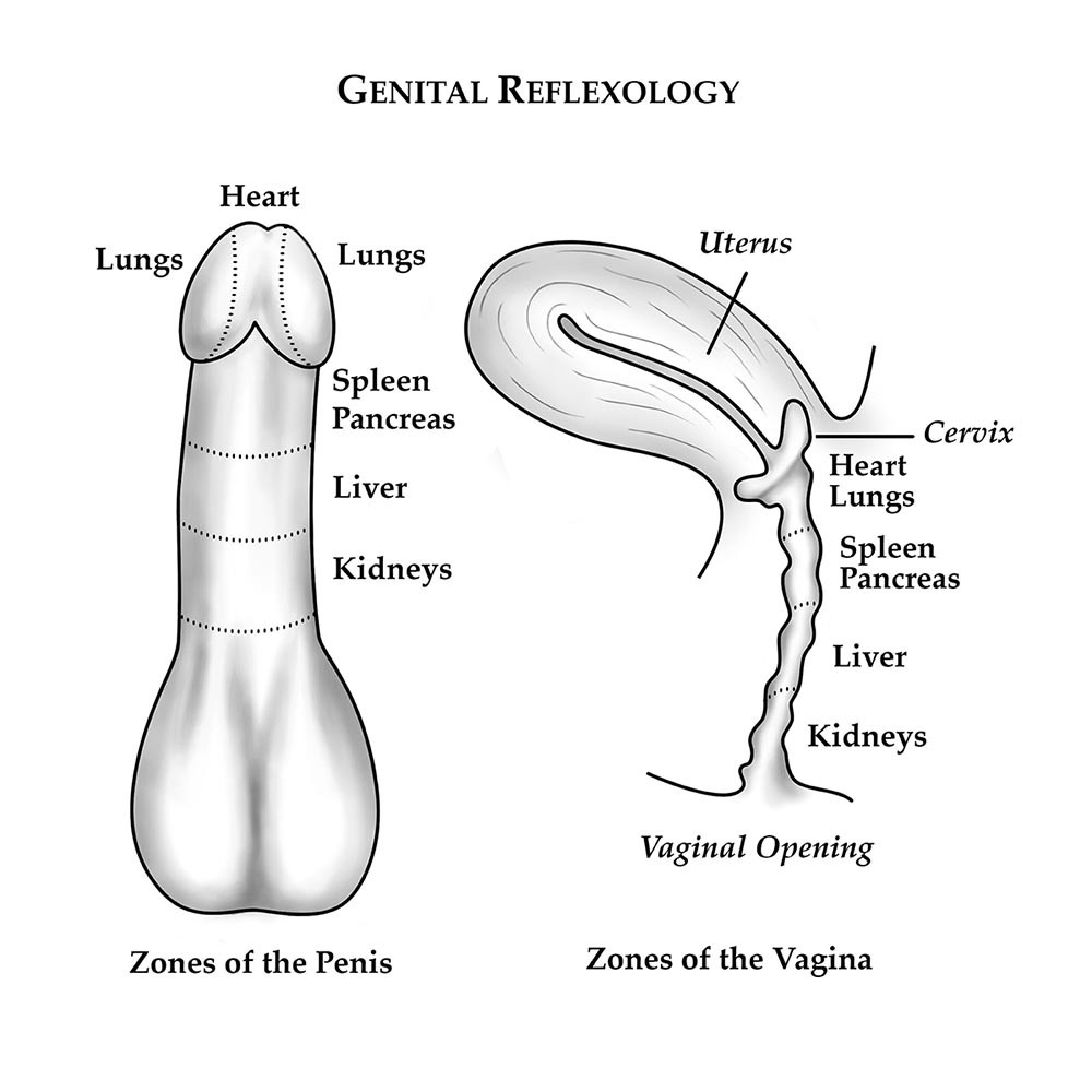 Body parts to massage during sex