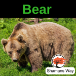 Podcast on Bear