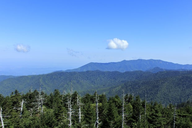 Mt Le Conte as viewed from Clingmans' Dome