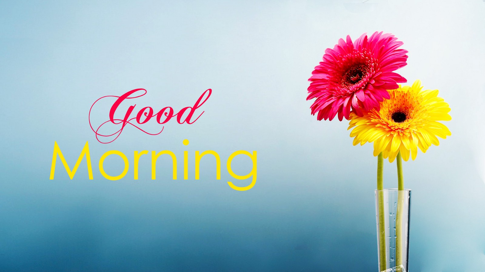 top 75 good morning wallpaper free download – anoosha khan – medium
