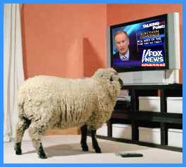 Image result for fox viewership uneducated