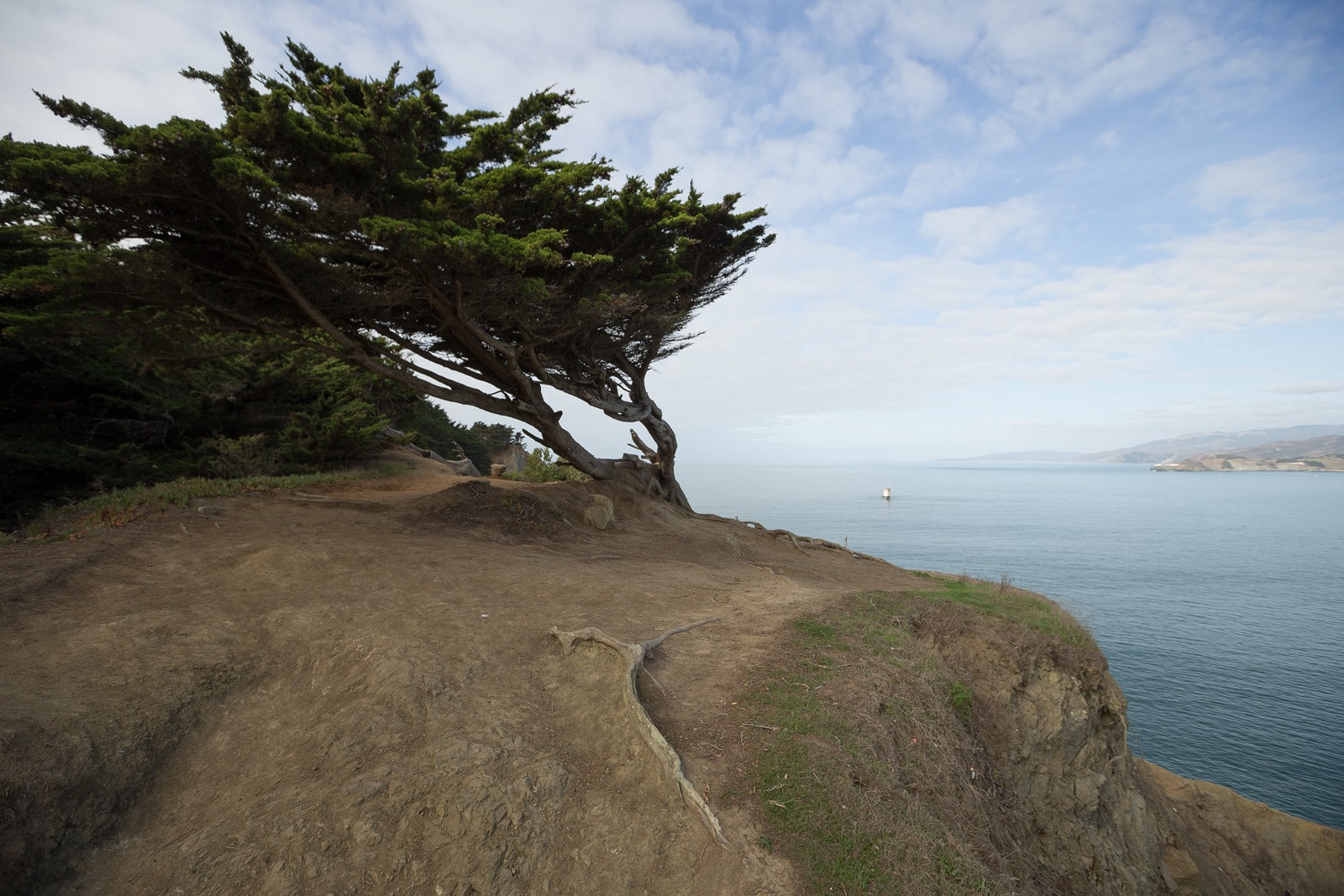 The Lesser Known Treasures of Lands End — The Bold Italic — San Francisco