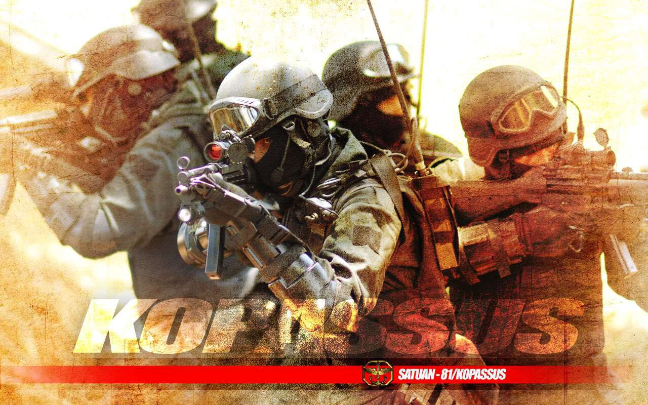 Seeking a modern role - Indonesia's army  Indonesian Military Strength