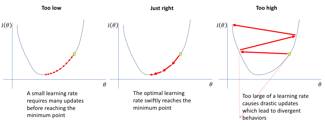 Learning rate effect