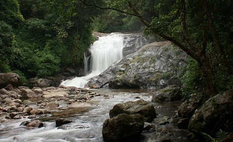 Attukal Waterfals in Munnar