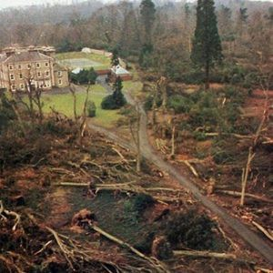 The Great Storm of 87 Fell Many Trees in Stanmer Park