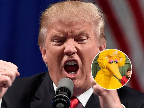 Image result for big bird died trump