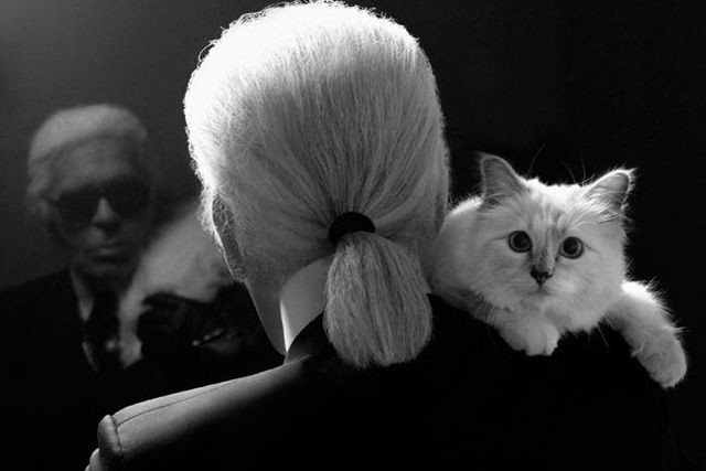 Karl and his cat Choupette
