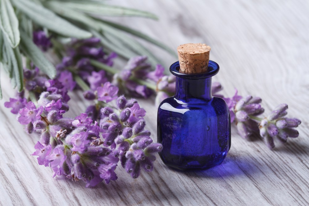 Why Everyone Should Use Essential Oils