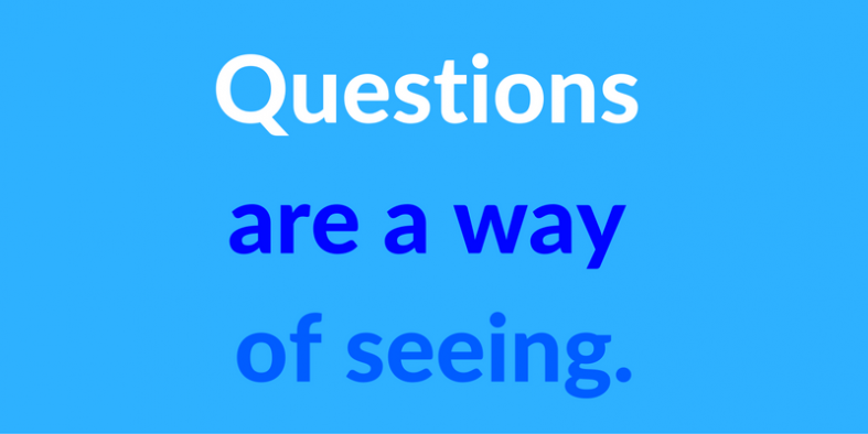 questions are a way of seeing