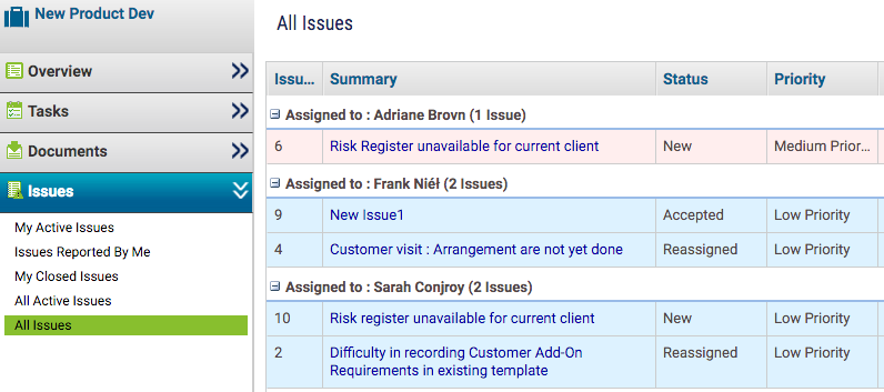 Project Issues Assigned to Team Members - KPIs for Project Manager