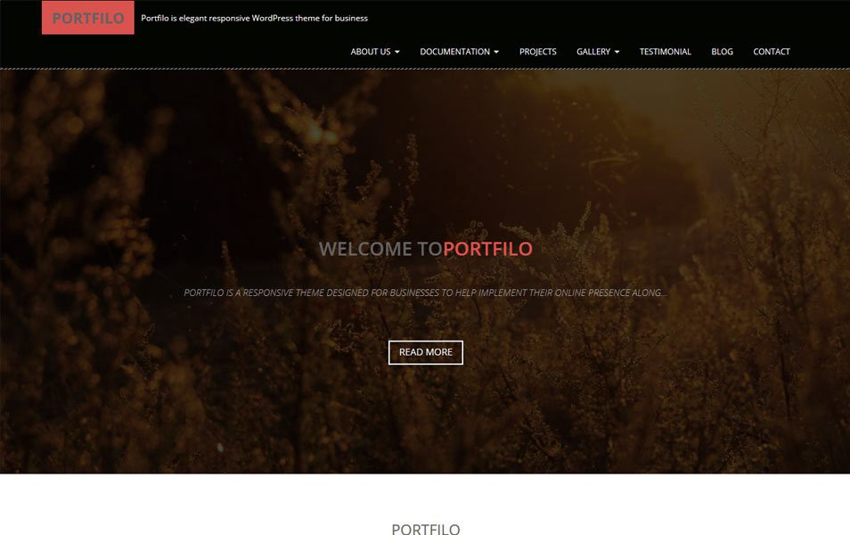 Portfilo-Responsive-WordPress-Theme1