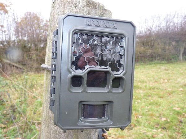 Buy a dummy trail camera