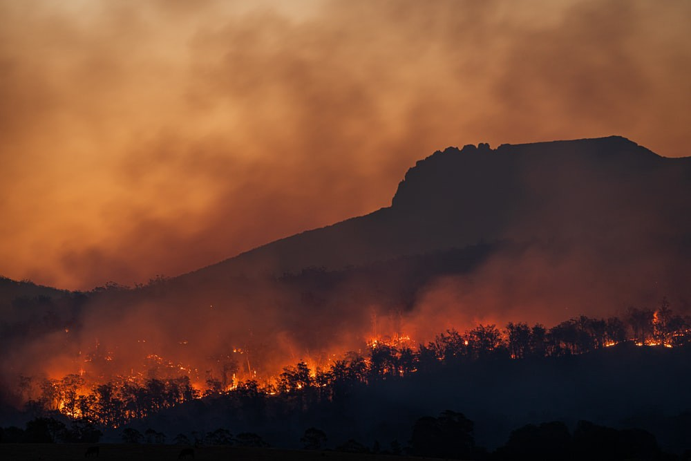 Bush fires and climate change