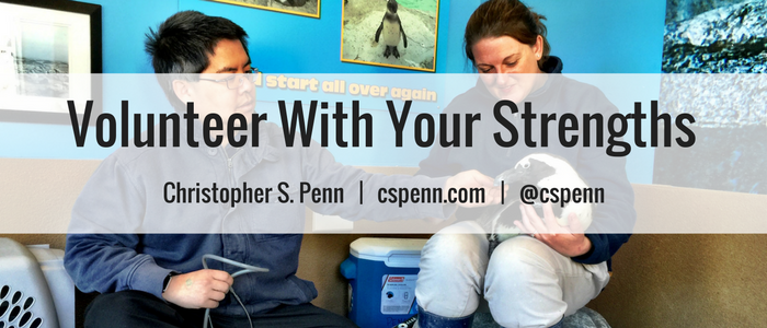 Volunteer With Your Strengths - new header.png