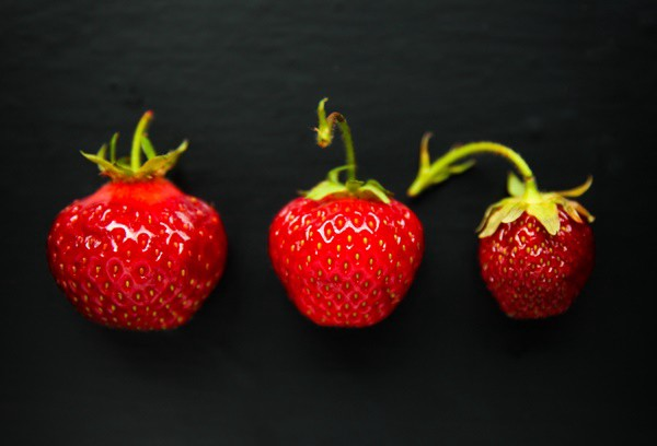 84e707a070b I never really investigated more into the world of strawberries so I  thought it was time to do that. Let s find out everything we can about this  lovely ...