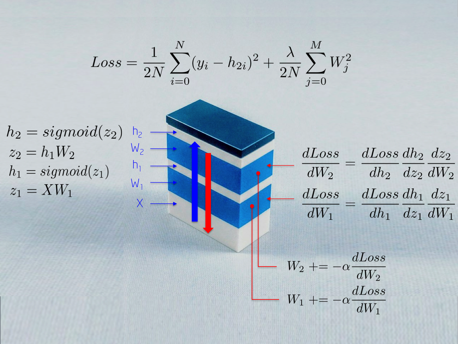 One LEGO at a time: Explaining the Math of How Neural Networks Learn