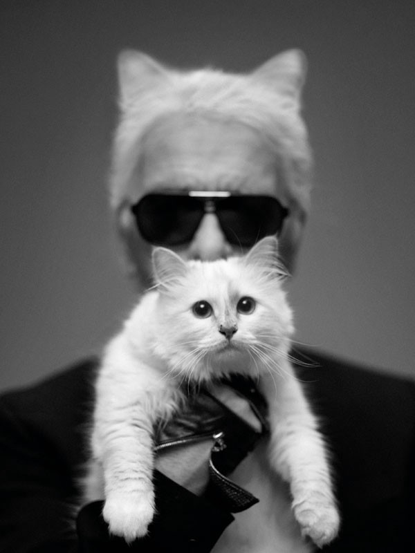 KAT DADDY, Karl Lagerfeld holding his cat Choupette