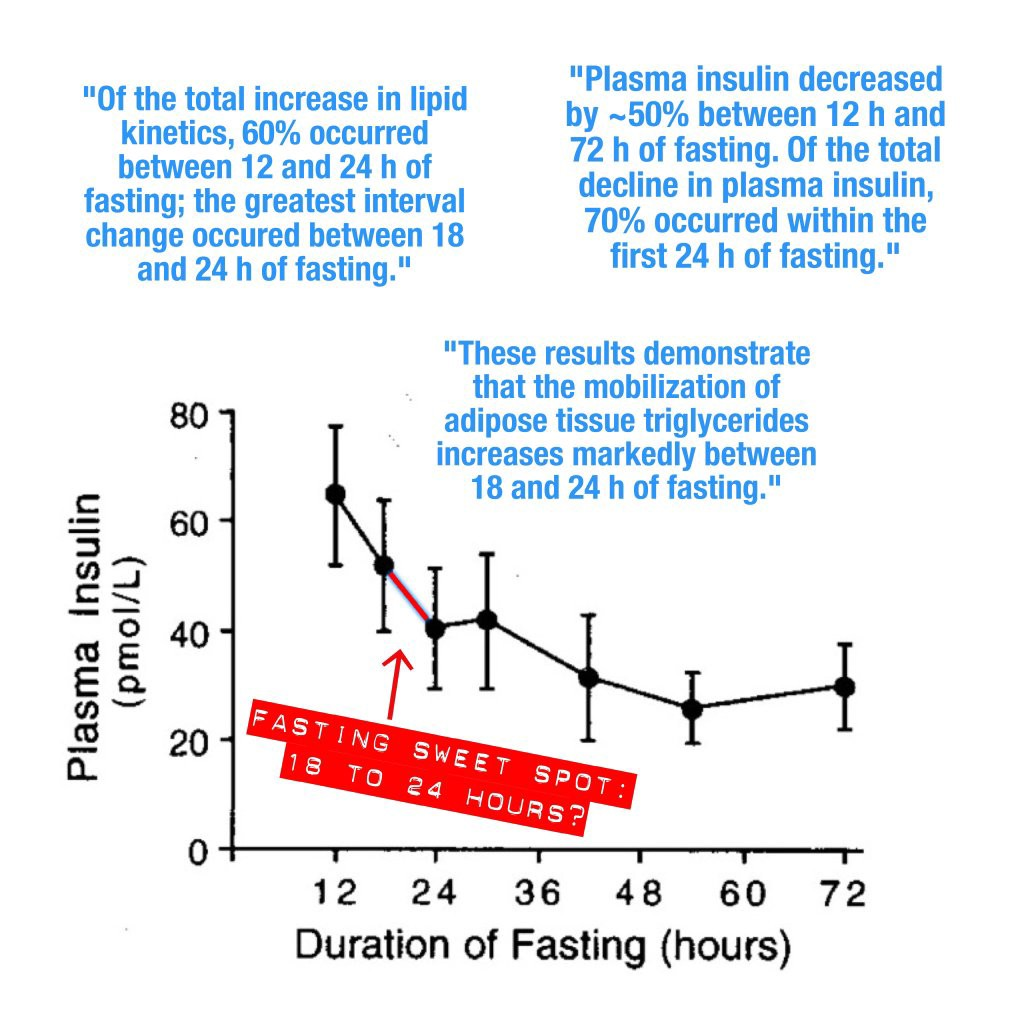 The Sweet Spot for Intermittent Fasting