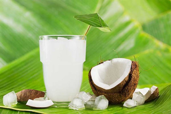 Organic Coconut Water Suppliers