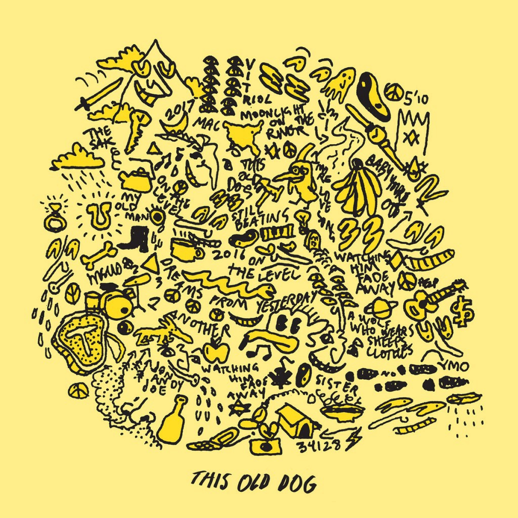 This Old Dog album by Mac Demarco
