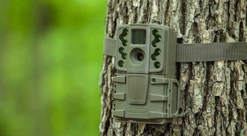 Trail camera with camo print