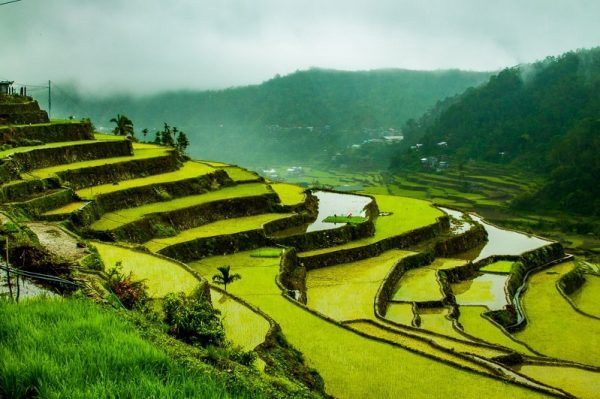 Philippines Banaue Rice Terraces Photo by Nathan Sado from Fit Living Lifestyle