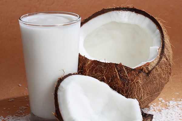 The coconut milk suppliers