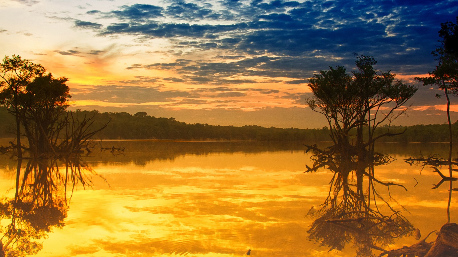 Sunrise in Manaus, Amazon, Brazil
