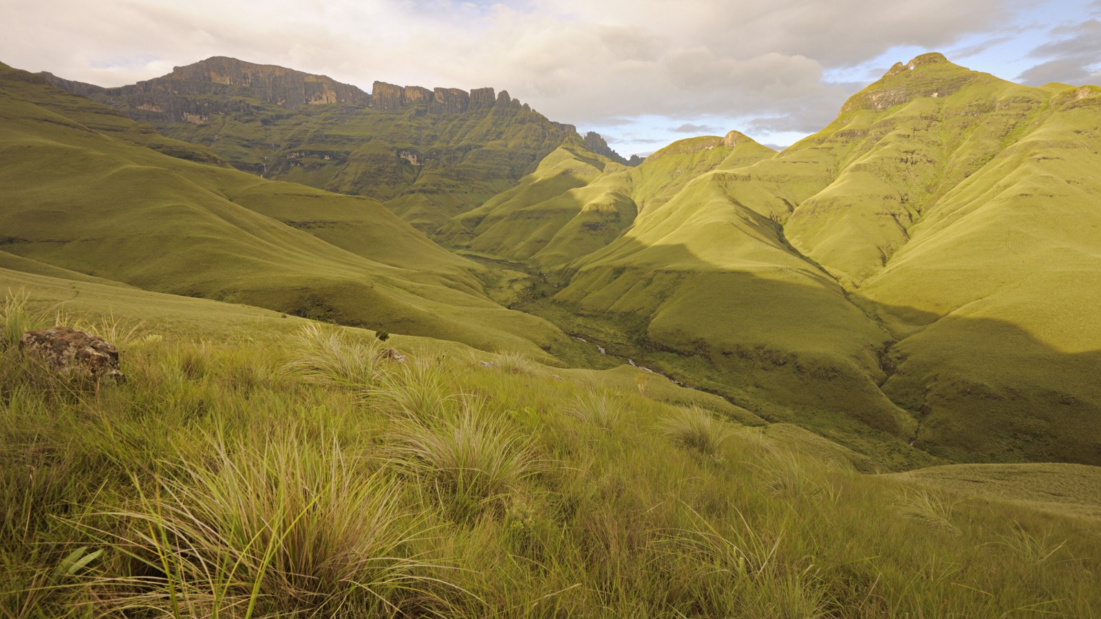 Dawn light on Drakensberg mountain peaks, South Africa