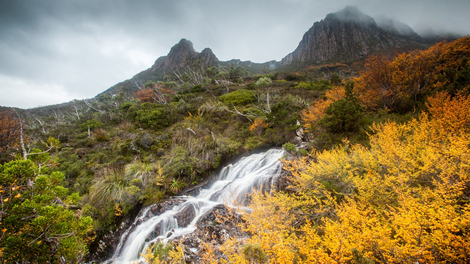 Stream running down Cradle Mountain, Australia